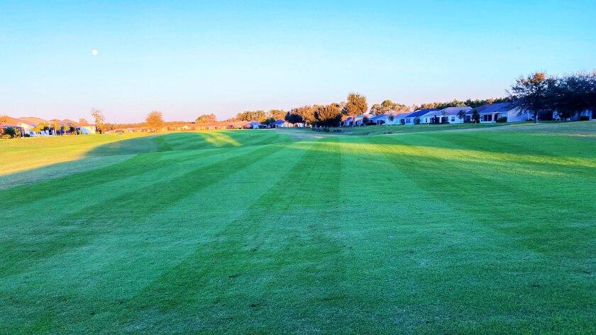 golf course at Arlington Ridge Golf Club