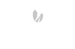 DubsDread White Logo