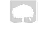 Crawfordsville White Logo