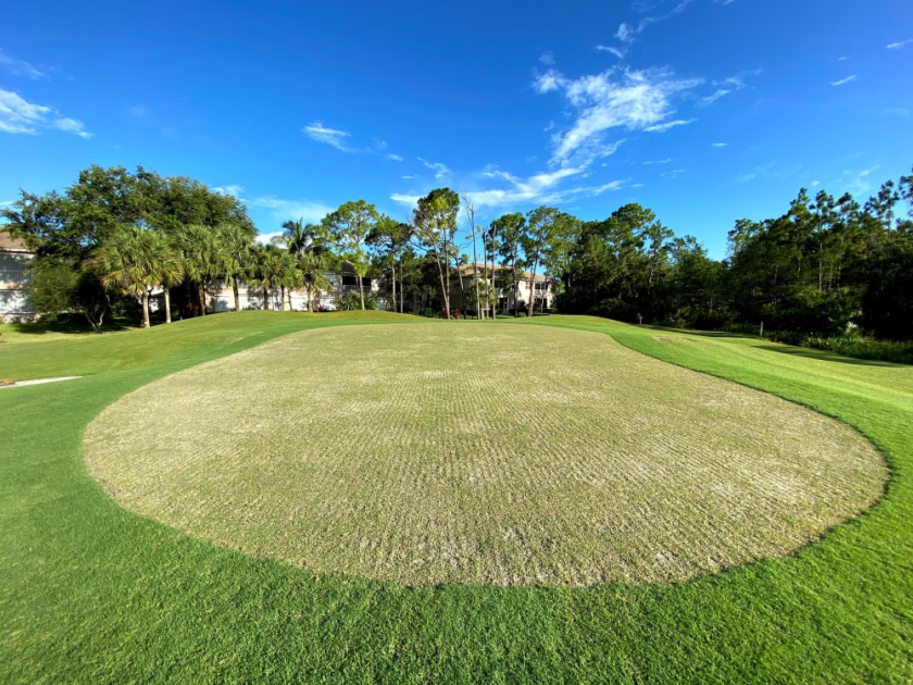 north golf course renovation at Spanish Wells Golf and Country Club