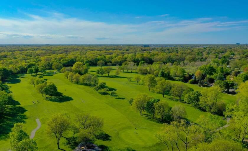 Billy Caldwell Trees Overhead Golf Course Drone Photography