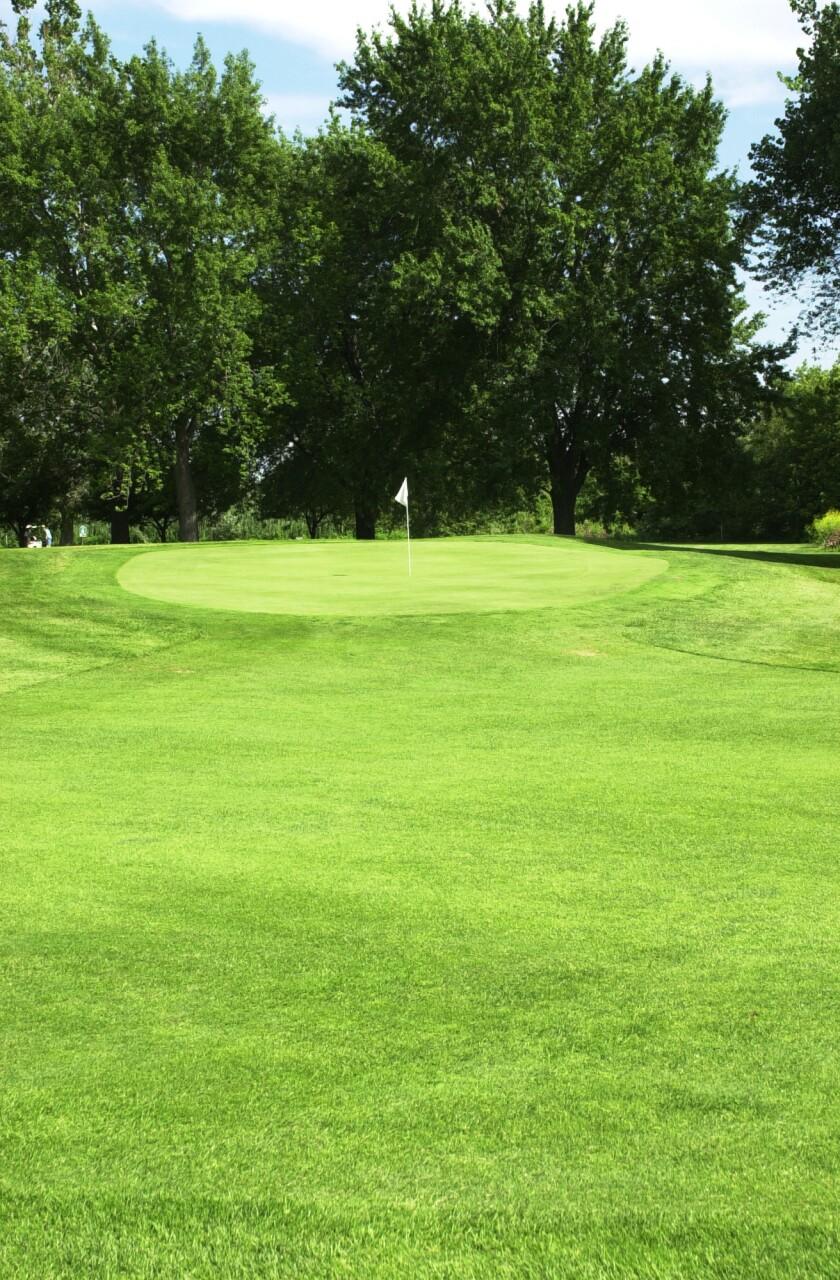 Burnham Woods Golf Course, Forest Preserve Golf