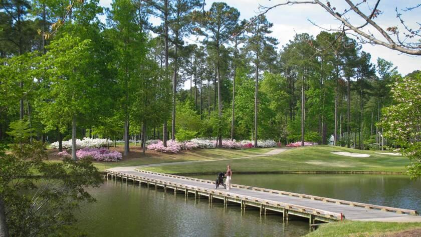 Cypress Landing Golf Club, Eastern North Carolina Golf Course