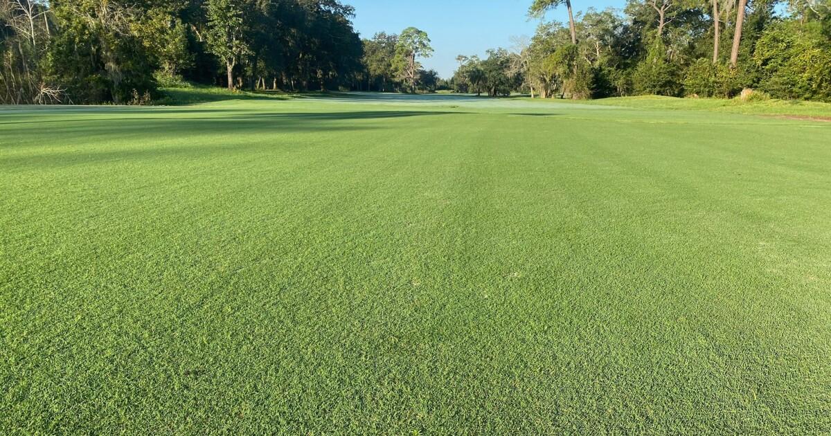 30+ Blue cypress golf course jacksonville ideas in 2021