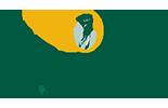 DubsDread Color Logo