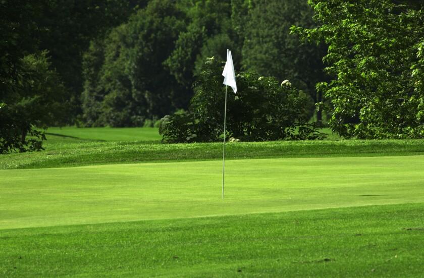 Burham Woods Golf Course, Forest Preserve Golf