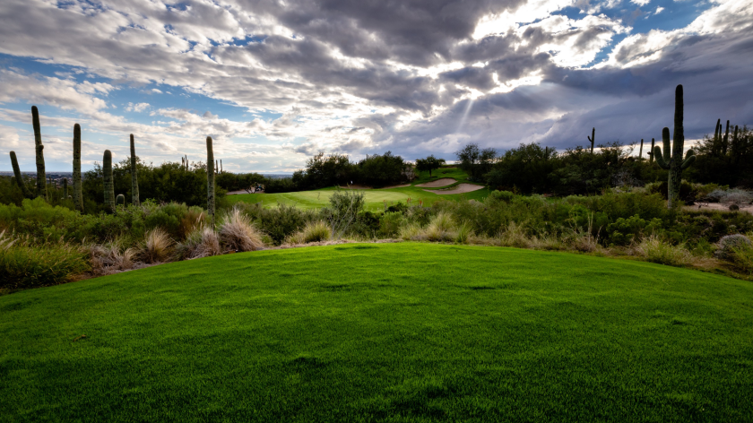 Arizona National golf course
