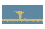 Jack Frost Color Logo