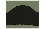 Stonetree Color Logo