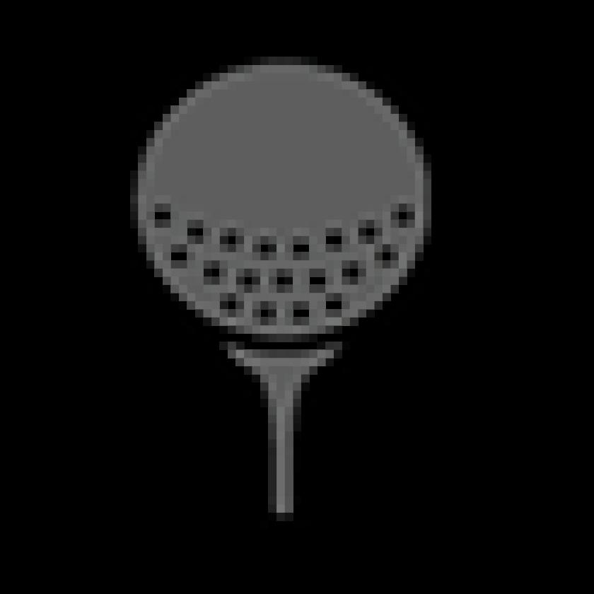 gray golf ball on tee icon